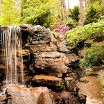 Waterfall at Garvan Gardens