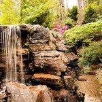 Waterfall at Garvan Gardens