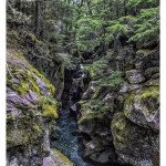 Foto Friday – Avalanche Creek Gorge