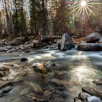 Foto Friday – Shining Light, Cascade Creek