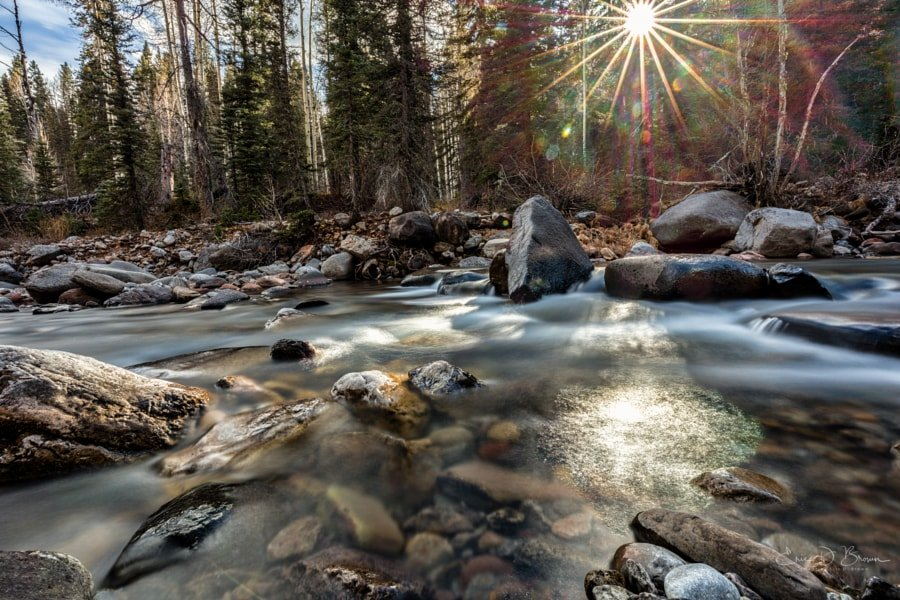 Shining Light, Cascade Creek