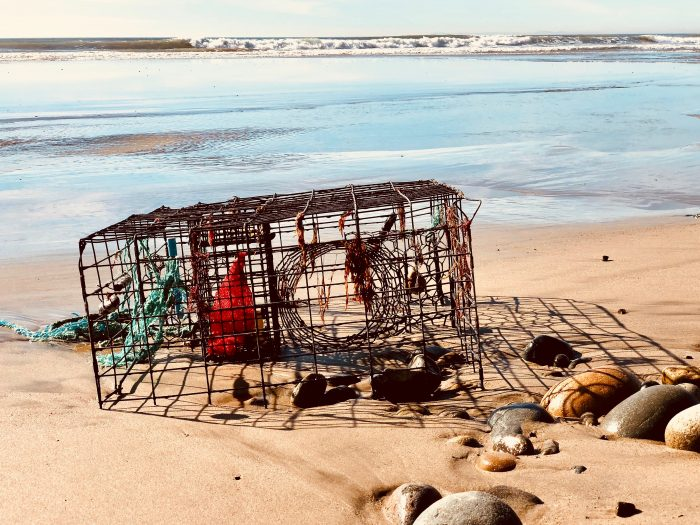 a photo of a lobster trap by the see